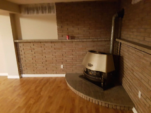 Gas Fireplace - DECORATIVE ONLY