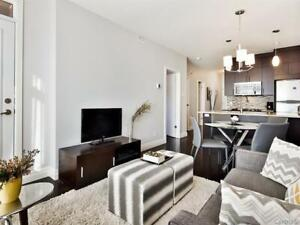 Furnished 1 bedroom Condo for rent Downtown (rue du Fort)