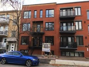 Open House Jan. 22, 2017 (4 Condos for sale) Le Sud-Ouest (MTL)