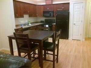 Available Immediately! Beautiful fully furnished condo in Ft Sas