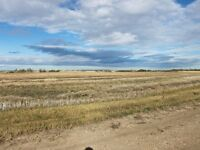 138.36 acres of Agricultural land available now near Tofield!!