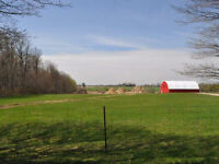 25 Acres Just South of Lake Belwood
