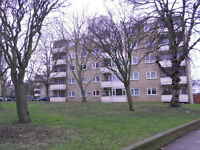 2/3 DOUBLE BEDROOM FLAT, FULLY FURNISHED, NEXT TO FINSBURY PARK UNDERGROUND AND BUS LINKS, N5