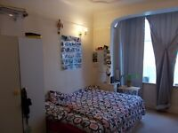 Huge Double Room in Friendly House share - All Bills Included