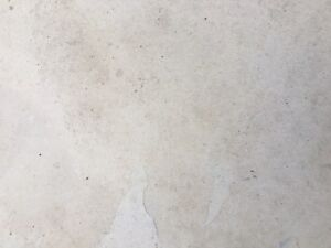 Algonquin Limestone Patio Stones