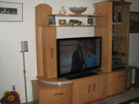 TRES BEAU CABINET TELEVISION/VERY NICE TELEVISION CABINET