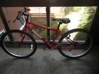 Giant unisex mountain bike ( little used )