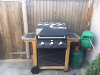 *** LARGE FAMILY BBQ ***