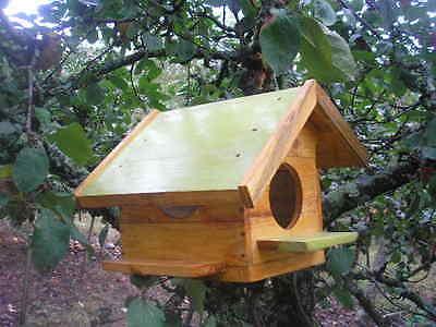 CASITA de madera para pájaros + regalo de cereales