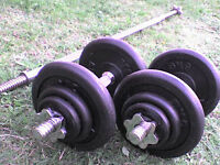 83 lb 38 kg Metal Dumbbell & Barbell Weights - Heathrow