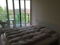 King size bed IKea Malm white with mattress