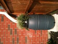 Fundraise For Your Non-Profit With Rain Barrels!
