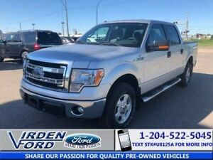 2014 Ford F-150 XLT XLT Supercrew 5.0 4x4