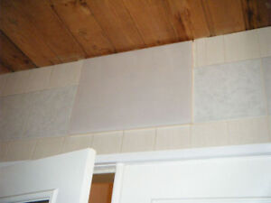 9 plastic white square wall tiles (you may silicone them)