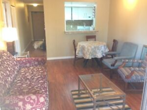 1 BEDROOM CONDO,FURNISHED,RENOVATED,DOWNTOWN DRAKE ST,MARCH 1