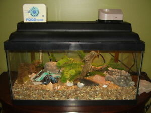 Top of the line accessories for Aquarium 20+ gallon