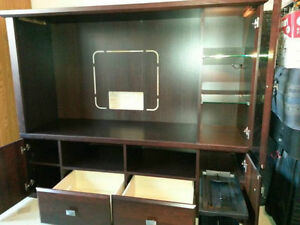 Amazing TV unit Oakville / Halton Region Toronto (GTA) image 2
