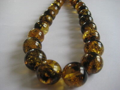 Bernsteinkette Baltic Amber  Necklace Grün Green