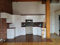 SPACIOUS AND BEAUTIFUL LOFT FOR RENT
