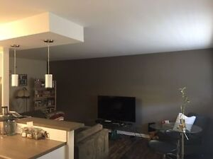 Newly Renovated Large 2 Apartment