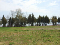 0 Peller Crt, Bobcaygeon - Last Waterfront Lot Available!