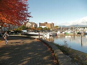 902 Sq.Ft. Condo - By Granville Island