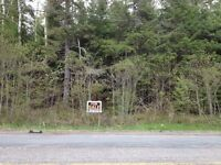 Building Lot for Sale on Route 845, Kingston, NB