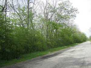 15 Acre Building Lot - Welland