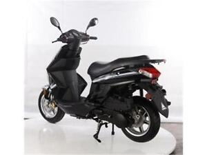 last year model sale!!! TT Paladin 150 Scooter for only $1695