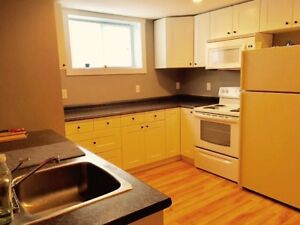 Totally furnished fully renovated one bedroom apartment
