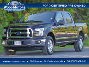 2015 Ford F-150 XLT (5.0L V8!) Certified Pre-Owned