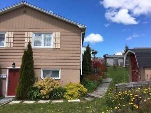 2 Quinton Street, Corner Brook-Richard-Butt-NL Island Realty