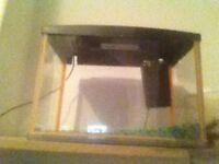 Whole fish tank setup