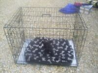 large dog cage crate pen, ideal puppy training, day care, travel secure etc,