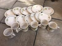 18 Piece Wedgwood Wild Apple Set Plates Cup and Saucers