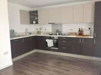 Spacious Modern 1 Bedroom Apartment West Ealing 3 Months Short Term Let