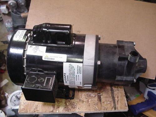 New little giant TE-6-MD-HC mag drive pump 115/230v 1/2hp motor march iwaki