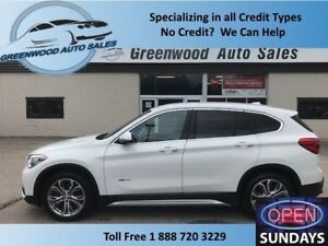 2016 BMW X1 BACKUP CAM! PANO ROOF! BEAUTIFUL! FINANCE NOW!