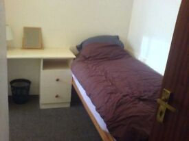 Low Cost Room in Zone 2 Available Now!
