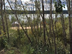 Incredable lake view lot - a BC view