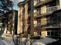 Piccadilly Place - Close to MacEwan University