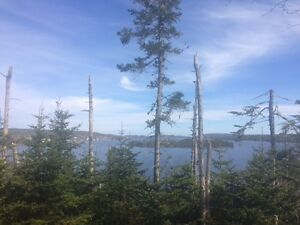 Beautiful pond front lot located in Blaketown St. John's Newfoundland image 5