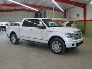 2013 Ford F-150 Platinum 4x4 Eco Boost 2 To Choose From
