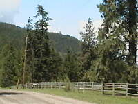 Horse Acreage For Rent - October 01