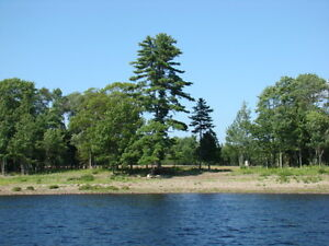 WATERFRONT LOTS FOR SALE ON GRAND LAKE, CENTRAL NEW BRUNSWICK