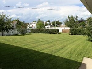 Upgraded bungalow available NOW in Tofield Strathcona County Edmonton Area image 8