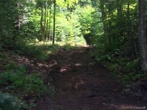 Brébeuf, 10 minutes de Tremblant, terrain 35 arpents  (29 ac)