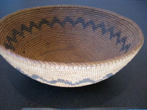 "California Basket attributed to MIWOK ~ Antique ~ c.1900-1920 ~ 8"" d X 3"" h"