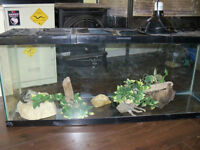 Great 45 gallon terrarium with accessories for sale