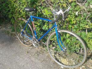 Avante Garde 10 Sp classic commuter bike